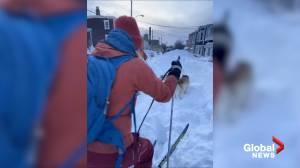 Newfoundlanders use skis to get around amid record snowfall