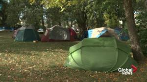 Edmonton's Peace Camp moves two blocks to different park in Old Strathcona