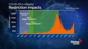 Alberta doctors say renewed restrictions not enough to curb COVID-19 spread (01:49)