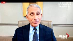 Coronavirus: Fauci says U.S. currently in a 'difficult situation' due to COVID-19