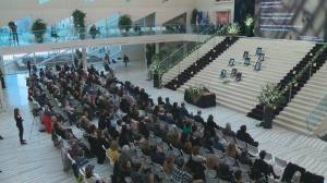 Edmontonians gather at city hall to honour Flight 752 crash victims with condolence book