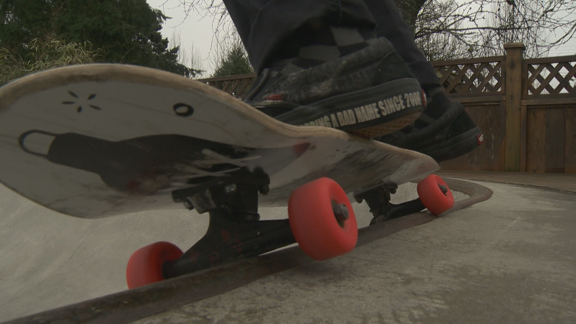 Maple Ridge home for sale includes piece of skateboarding history