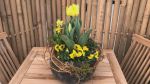 GardenWorks: Brighten outdoor space with spring planters (03:33)