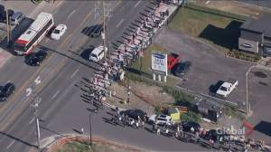 Scarborough COVID-19 vaccine pop-up clinic line winds through nearby neighbourhood (01:19)