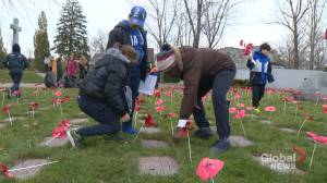 No Stone Left Alone initiative teaches children about Remembrance Day