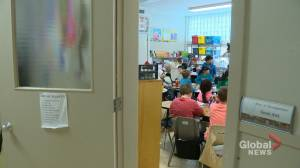 Saskatchewan auditor says improvements needed in early learning education (02:00)