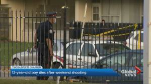 12-year-old boy dies after being struck by stray bullet in Toronto (02:41)