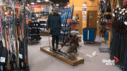 Play video: Cross-country skiing more popular than ever in Edmonton