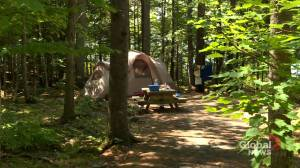 Provincial park sites re-opening as COVID-19 restrictions loosen up (01:54)