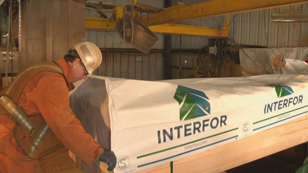Click to play video: 'Lumber Prices Fall Amid Market Volatility'