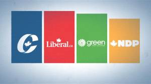 Federal Election 2019: How political polls work