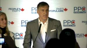 Federal Election 2019: 'It's only the beginning' declares Bernier during concession speech