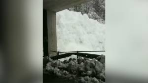 Dramatic video shows moment avalanche hits town in Switzerland