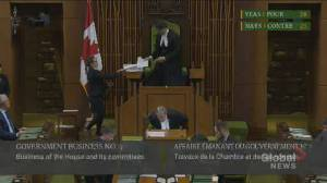 Liberals, NDP vote in favour to waive normal house proceedings amid pandemic