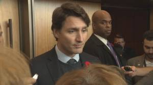 Trudeau says he's speaking with premiers, mayors to find way to represent all of Canada