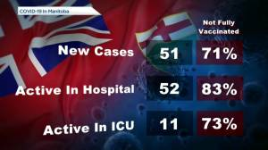 Manitoba's COVID-19/vaccine numbers for October 18 (00:38)