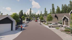 A unique subdivision in Kelowna will offer 20 smaller-sized homes allowing people to leave a smaller footprint on the environment