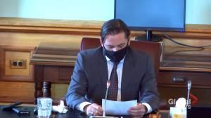 New Brunswick glyphosate hearings wrap up (01:46)