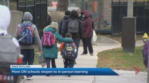 Toronto teacher shares concerns about school reopening amid new COVID-19 variants (04:23)