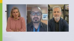 Should other provinces have a curfew? Doctor answers our COVID-19 questions (05:36)