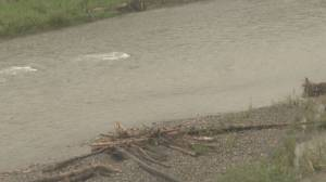 Calgary golfer rescues boy from drowning in Sheep River