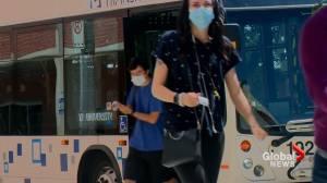 Masks mandatory: Lethbridge bus drivers lead by example
