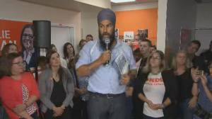 Federal Election 2019: Jagmeet Singh says young people most worried about 'catastrophic climate change'
