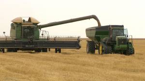 Federal carbon tax system could hit Saskatchewan farmers hard: APAS (02:17)