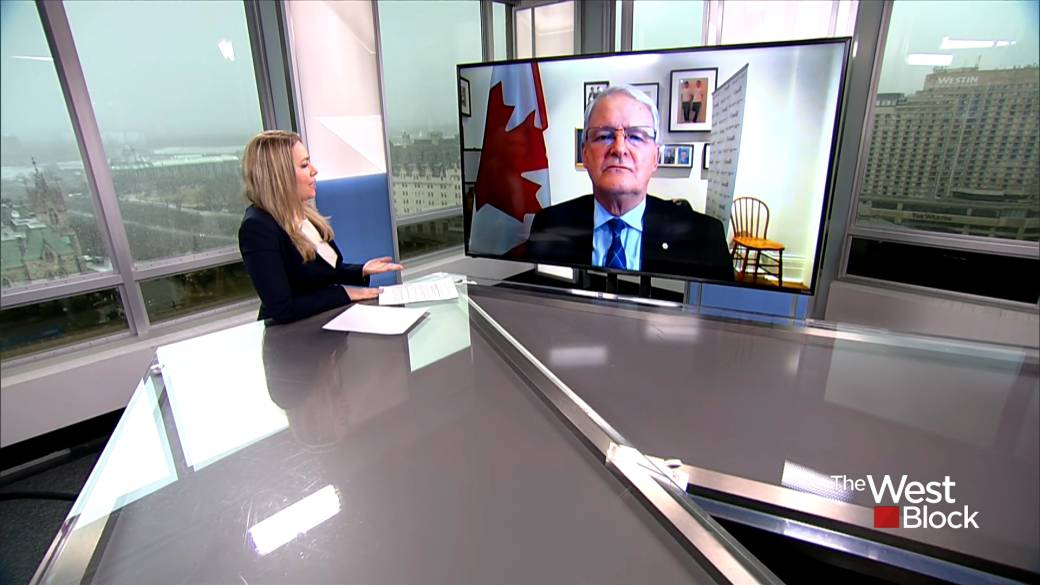 Click to play video: 'China's treatment of Uyghur minority is 'totally unacceptable': Garneau'