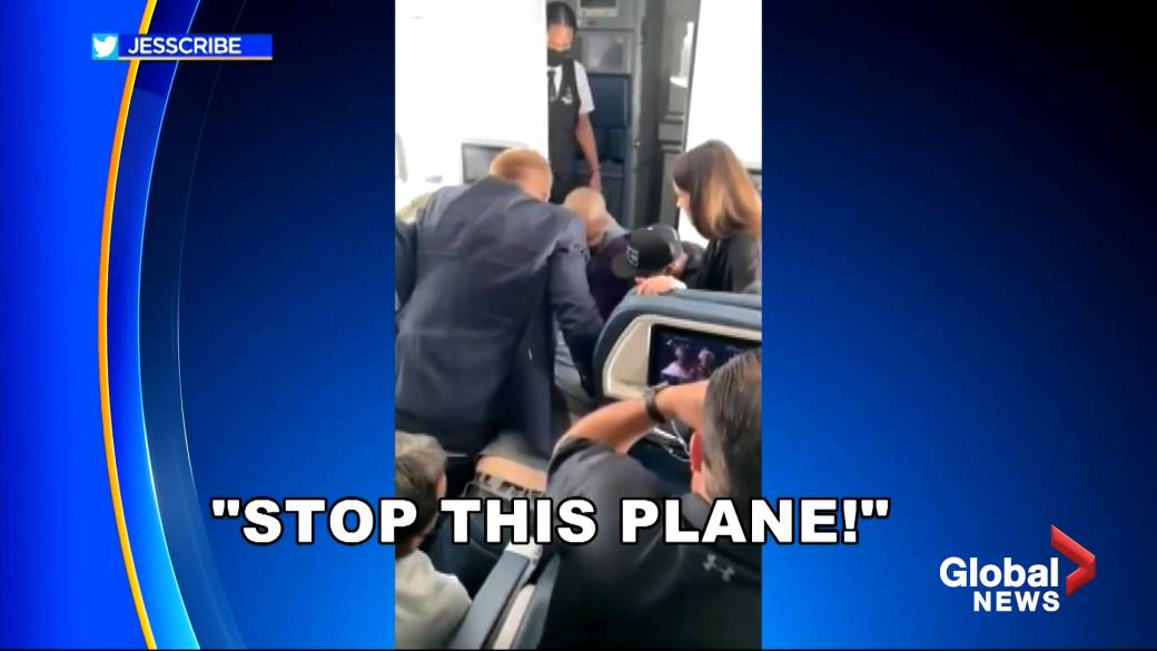 Click to play video: ''Stop this plane:' Unruly Delta passenger forces emergency landing after attempt to breach cockpit'