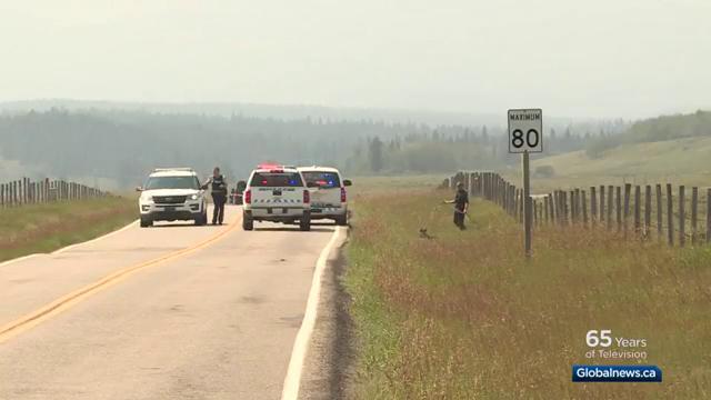 Alberta teen found guilty of shooting German tourist