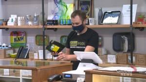 City report suggests Regina would need 24 pot shops to disrupt black market (01:43)