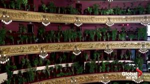 Coronavirus: Barcelona's opera performs for audience of house plants