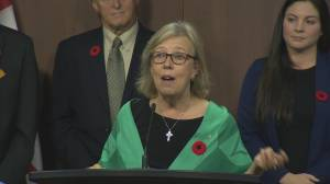 What's next for the Green Party without Elizabeth May as leader