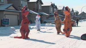 Community members in dinosaur costumes wish Edmonton boys happy birthday amid COVID-19 pandemic.