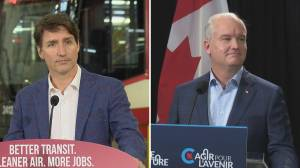 Visits to Calgary by Trudeau, O'Toole fuelling federal election speculation (01:46)