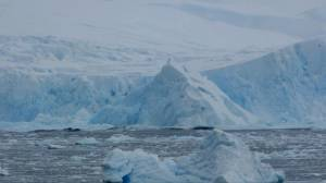 Footage captures moment 40m tower of ice splits from Antarctic glacier