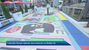 Yorkville artwork partnership creates impactful street mural (04:34)