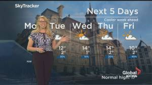 Global News Morning weather forecast: May 4, 2020