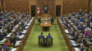 Division on display at 1st Question Period of new parliament session
