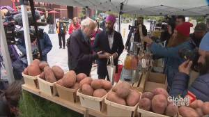 Federal Election 2019: Jagmeet Singh visits farmers' market in Ottawa with Ed Broadbent