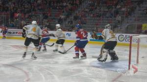 Fans, team remain hopeful Quebec Major Junior Hockey League season to return (02:01)