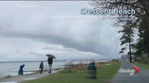 B.C. evening weather forecast: March 14 (02:35)