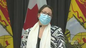 Coronavirus: New Brunswick's top doctor advises against holiday travel, stresses small gatherings (01:10)