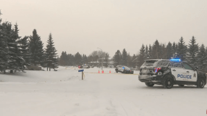 Investigation launched after officers fire weapons during break in north of Edmonton
