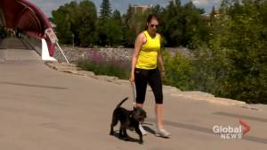 Calgarians finding ways to beat the heat (01:24)