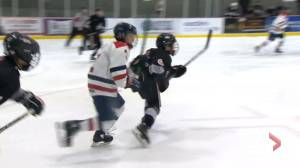 Hockey N.S. looking to help parents watch their kids play (01:01)