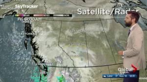 Edmonton afternoon weather forecast: Friday, November 13, 2020 (03:41)