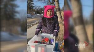 Winnipeg girl offering free groceries and art to neighbours