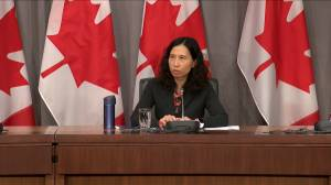 Coronavirus outbreak: Dr. Tam says Canada entering crucial week in COVID-19 fight